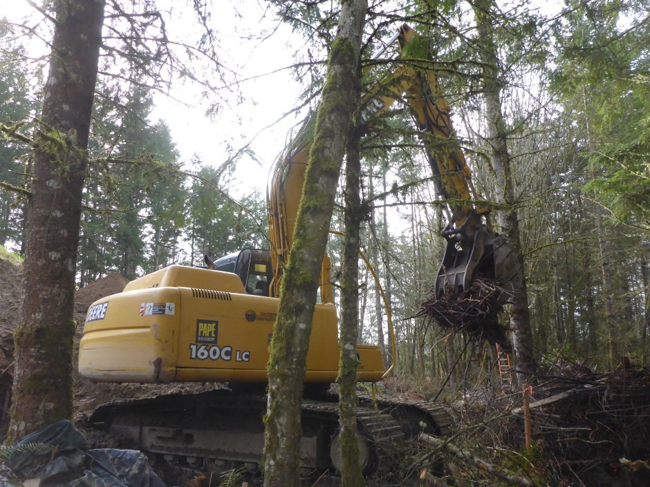 Brush Clearing With Excavator