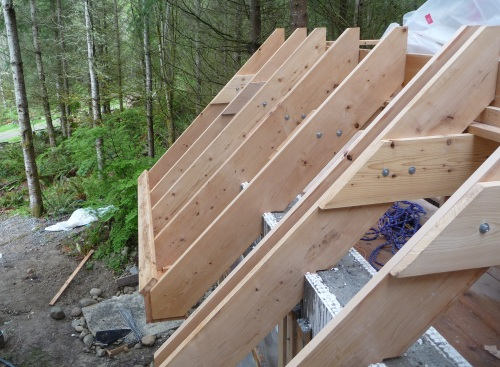Roof And Attic Roof Framing