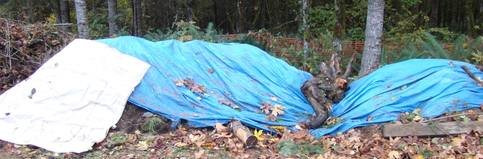 Top soil pile covered with tarps